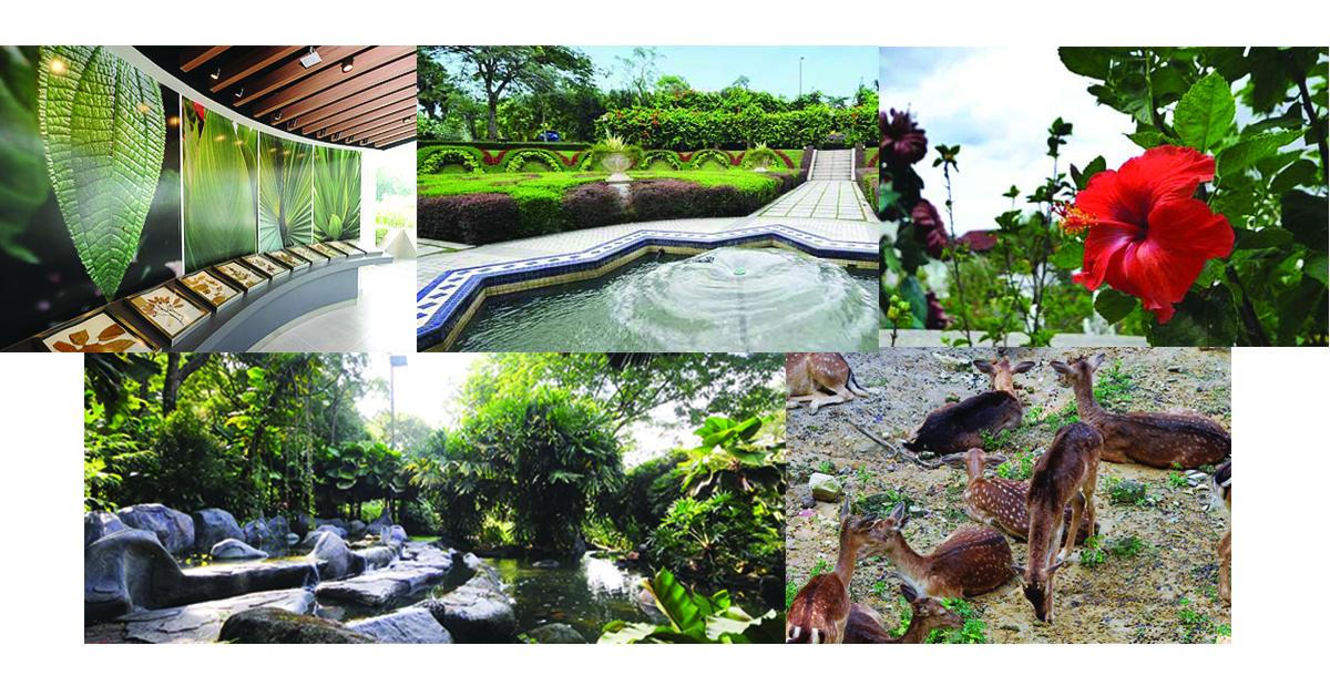 雪隆区免费游玩的4个景点:湖滨公园Perdana Botanical Garden